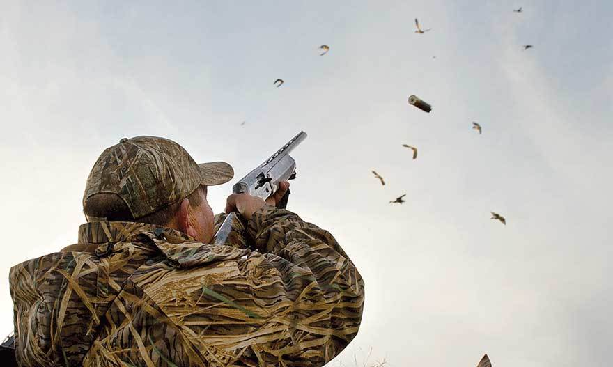 Pass Shooting duck hunting method