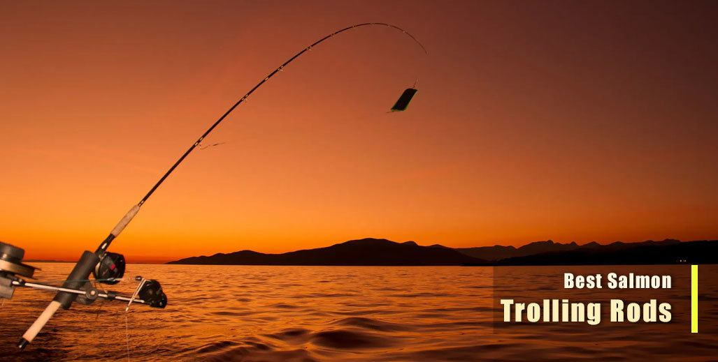 Best Salmon Trolling Rod for Downrigger
