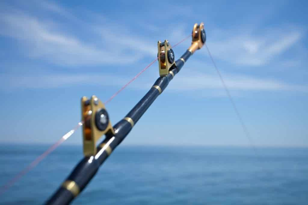 Different Types of Line Guides for Trolling Rods