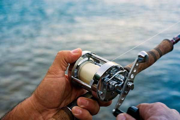 Buying Guides For Choosing the Best Salmon Trolling Reel