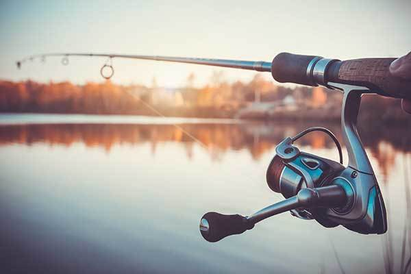 How to Choose the Best Musky Rod and Reel Combo? Buying Guide