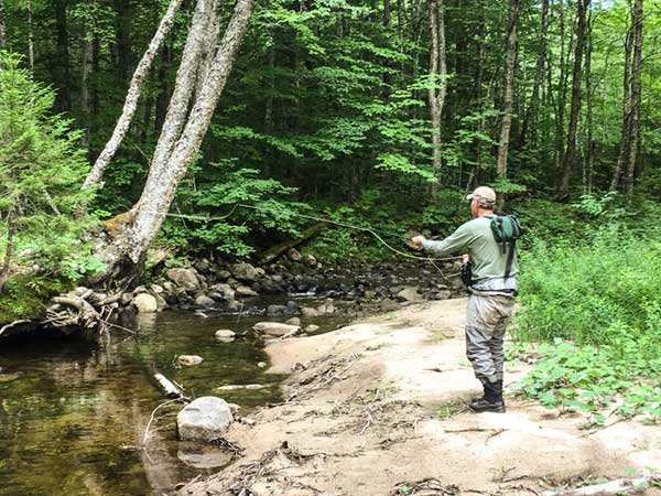 What Should Your Small Stream Rod Make of