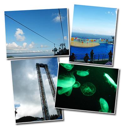 海洋公園遊2006