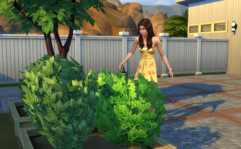 Zoe Patel tends her garden at her home in Oasis Springs.