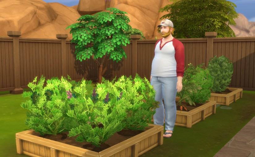 Steve Fogel admires his garden.
