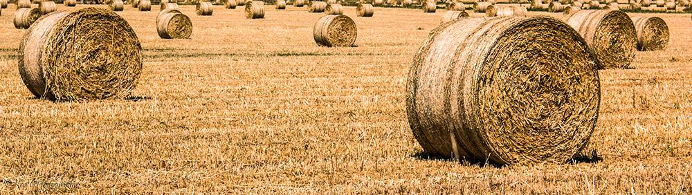 hay-bales-south-australia