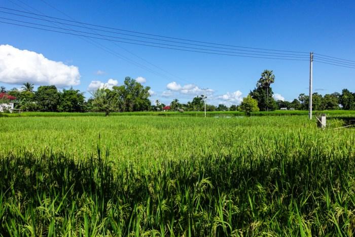 laos-07147
