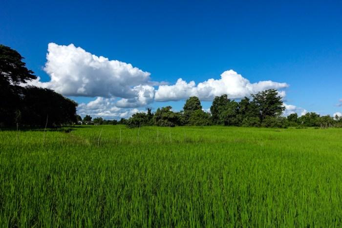 laos-07150