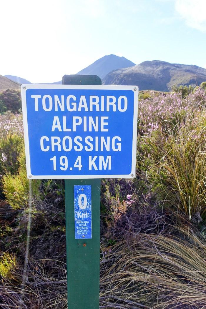 tongariro-05619