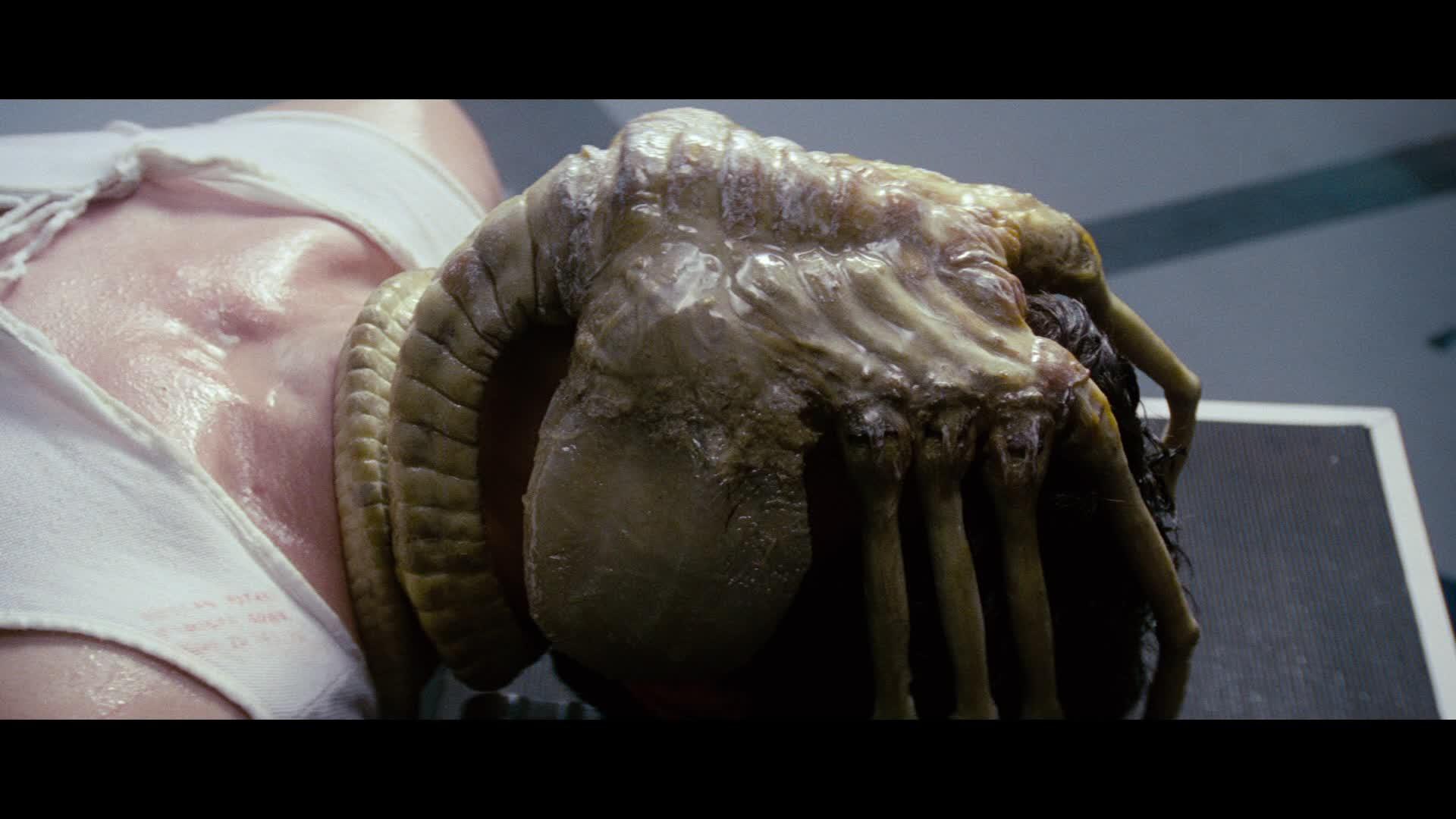 Alien-Facehuggers
