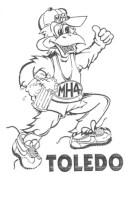 Toledo H3