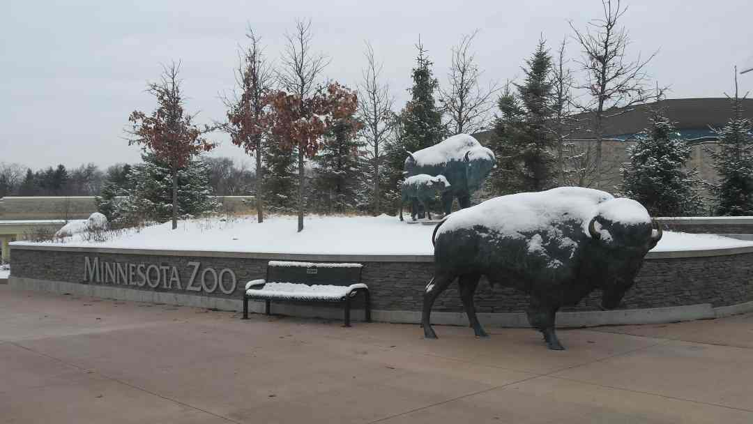 Minnesota Zoo in Winter