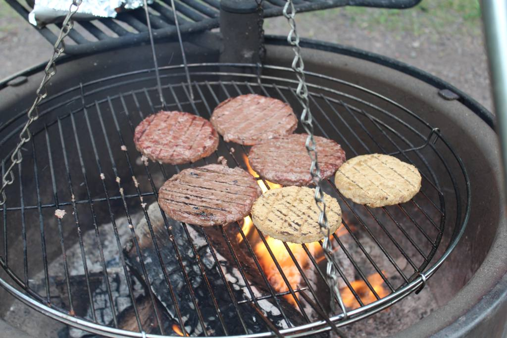 Burgers of the Fire at Gooseberry Falls State Park