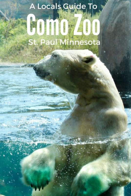 Como Zoo is a perfect free weekend adventure in the Twin Cities.