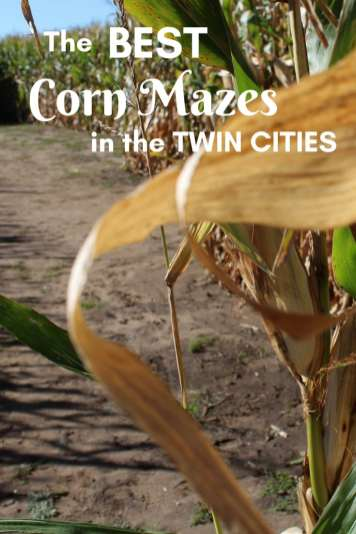 What better way to spend a fall day then at a corn maze, sipping warm cider. Check out the Best Corn Mazes in the Twin Cities