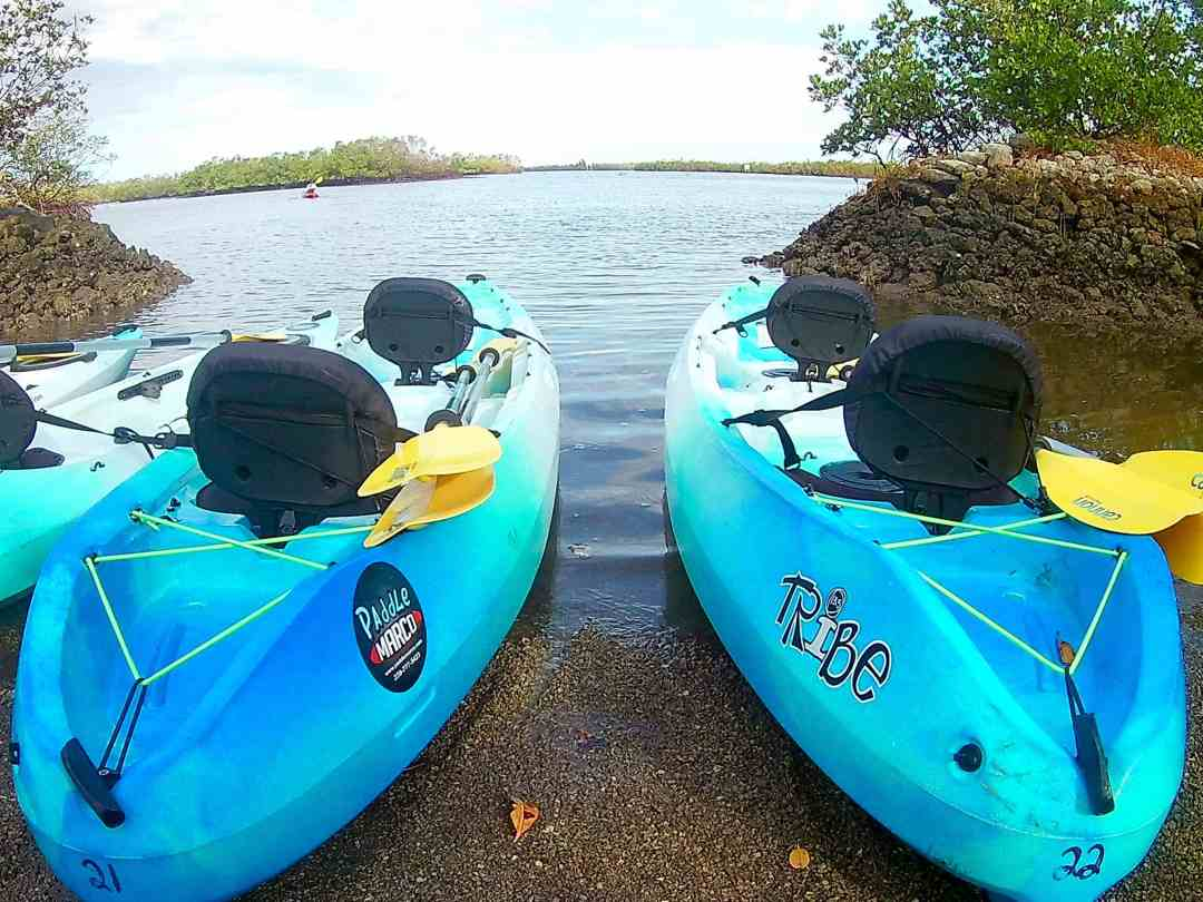 Kayaks on the water Paddle Marco Island