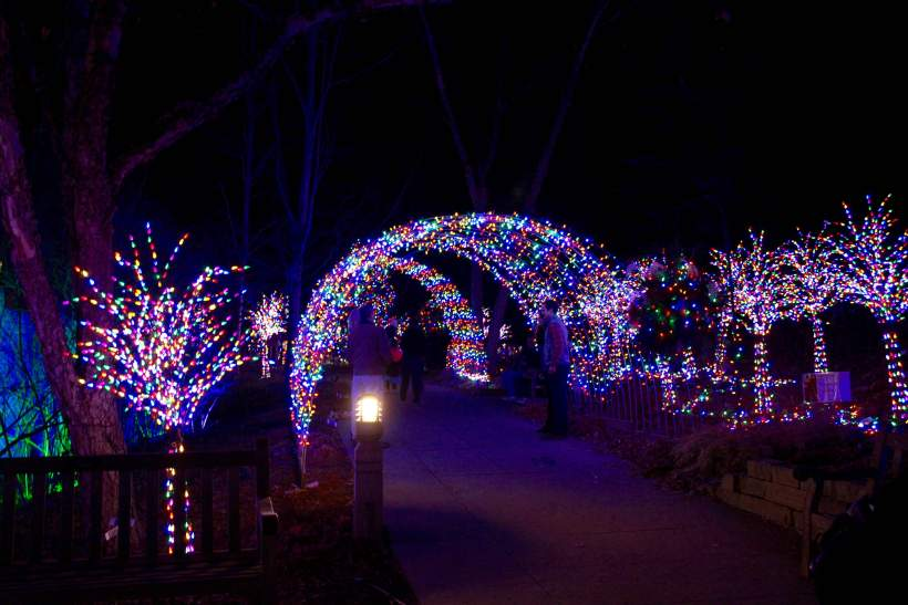 Tunnel of lights at Baking Spirits Brighter at the MN Landscape Arboretum
