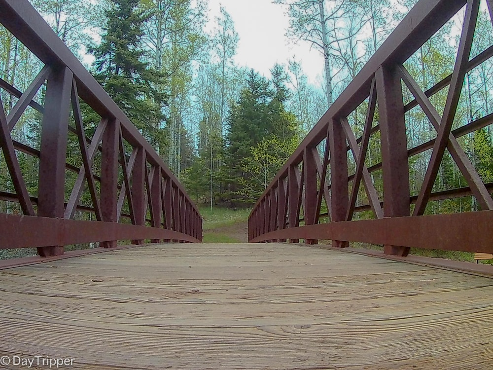 Bridge over Fifth Falls in Gooseberry Falls State Park