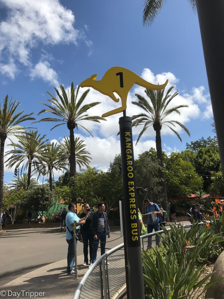 The fastest way to get around at the San Diego Zoo