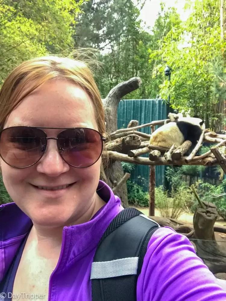 Everyone needs a Panda Selfie In their Life