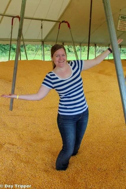The Corn Pit at Severs Corn Maze