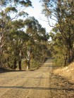 Marked Tree Rd, near Collector, New South Wales, Australia