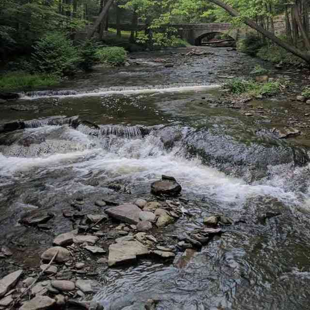 Water: Wolf Creek Letchworth