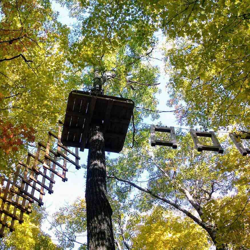 Date Night in Rochester: Aerial Adventures at Bristol Mountain