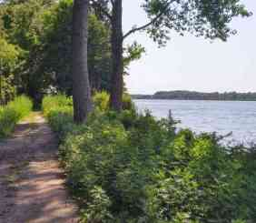 Braddock Bay Trails
