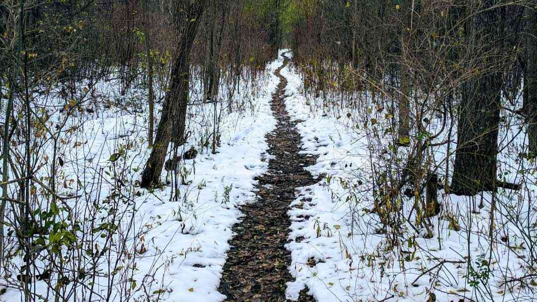Greece Canal Park winter trail cover