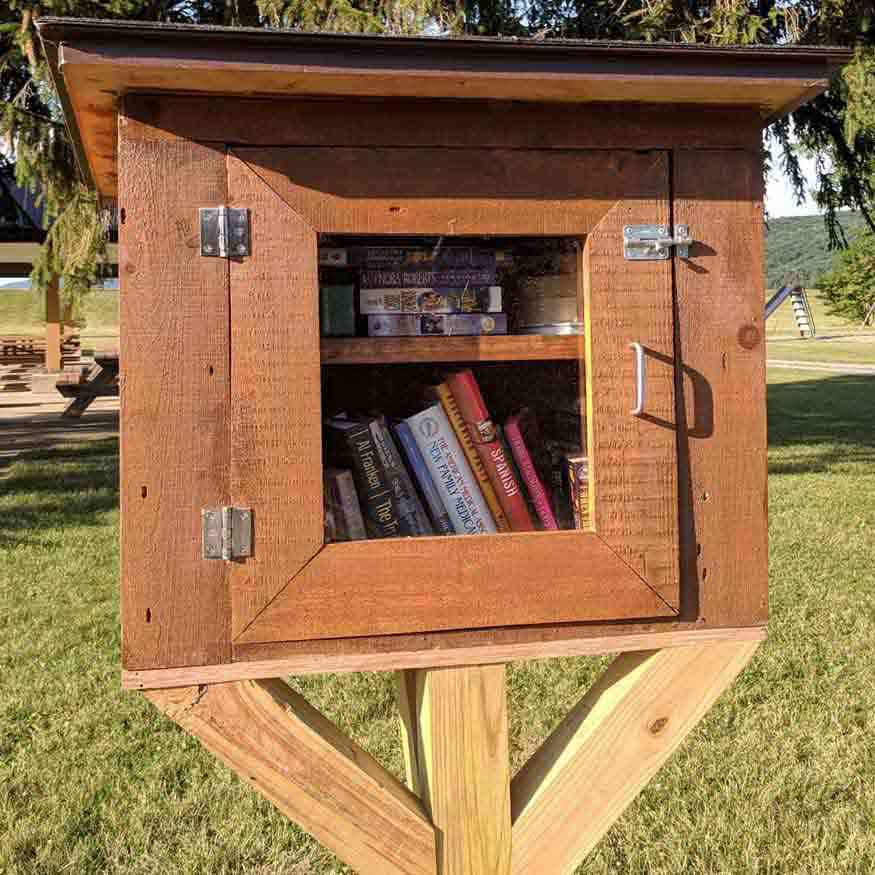 Hemlock Lake little library