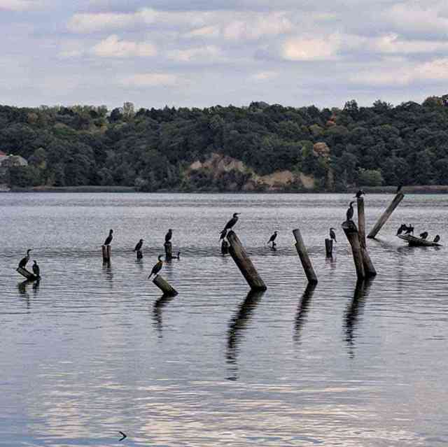 Monroe County Parks - Irondequoit Bay Park West