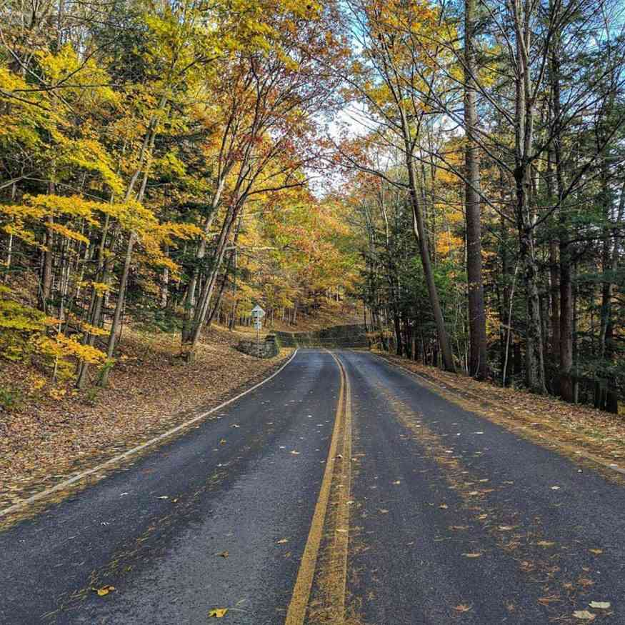 Letchworth State Park autumn road