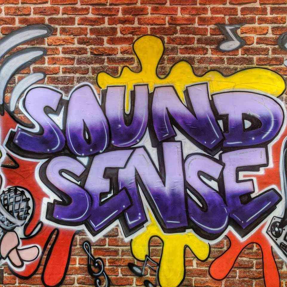 RMSC Sound Sense