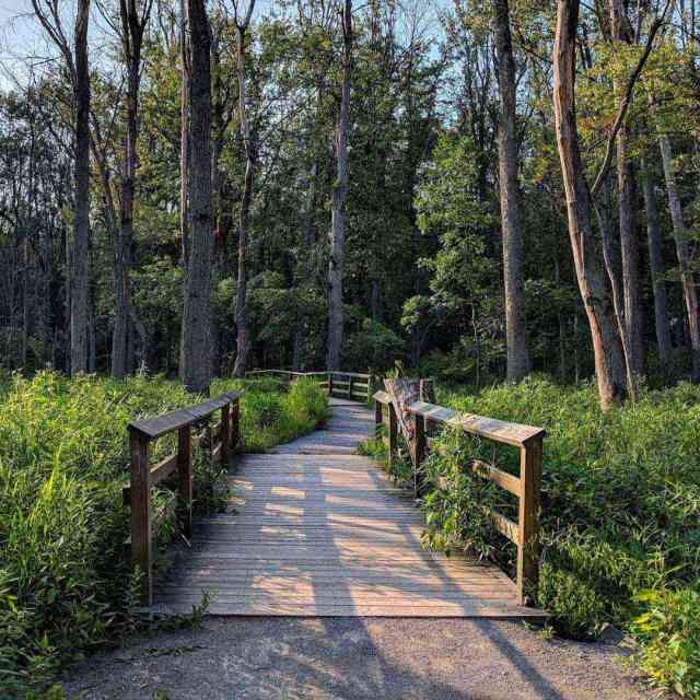 Tinker Park board walk