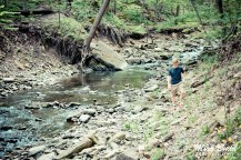 Hiking Trails in Ontario, Day trips in Ontario, Things to See in Hamilton, Things to See in Ontario, Top Hiking Trails in Ontario, Attraction Ontario,