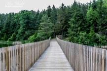 Caledon Hiking, Beautiful Places in Ontario,