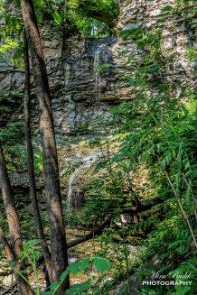 Spencer Gorge, Baby Webster's Falls Hamilton