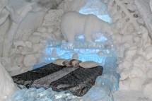 Tel De Glace Quebec Ice Hotel City