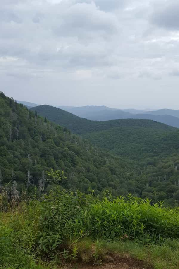 Views on the Blue Ridge Parkways in NC