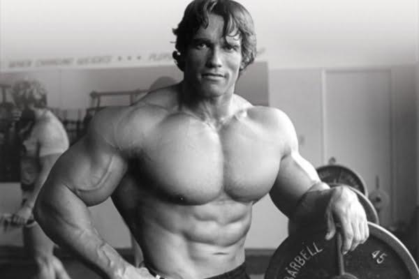 Arnold-Schwarzenegger11