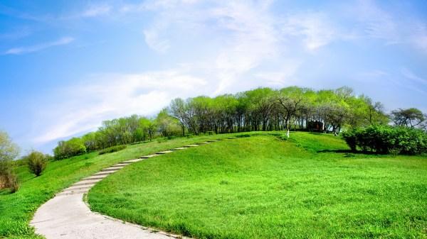 road green hill daywallpaper