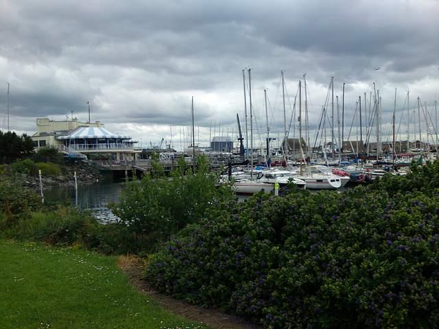 Howth Marina and sailing club.