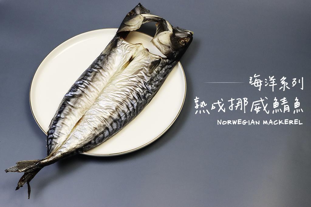挪威鯖魚 Norwegian Mackerel