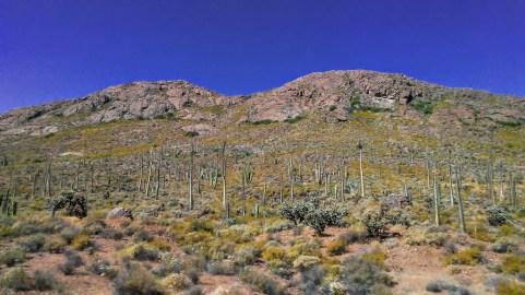 Border to La Paz #6