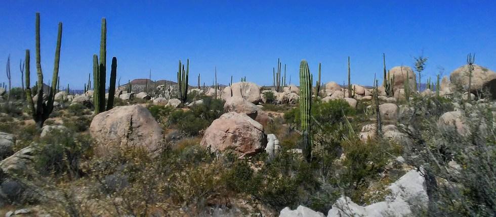 Border to La Paz Rocks #4