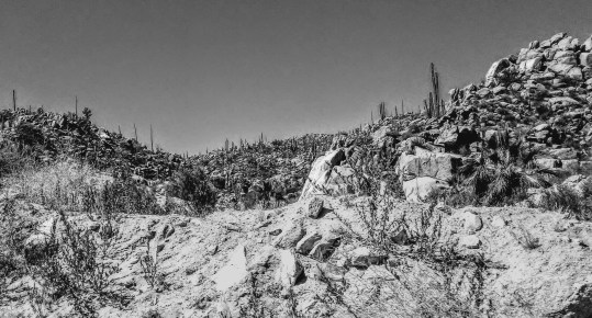 Border to La Paz - Rocks B&W