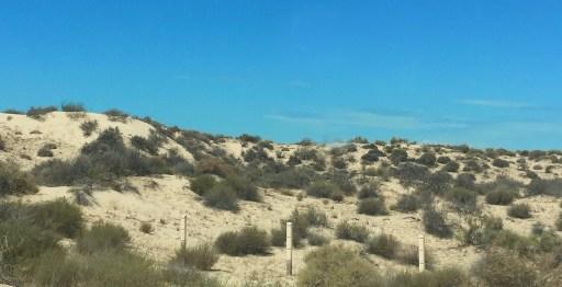 Between Puerto Peñasco & Tecate