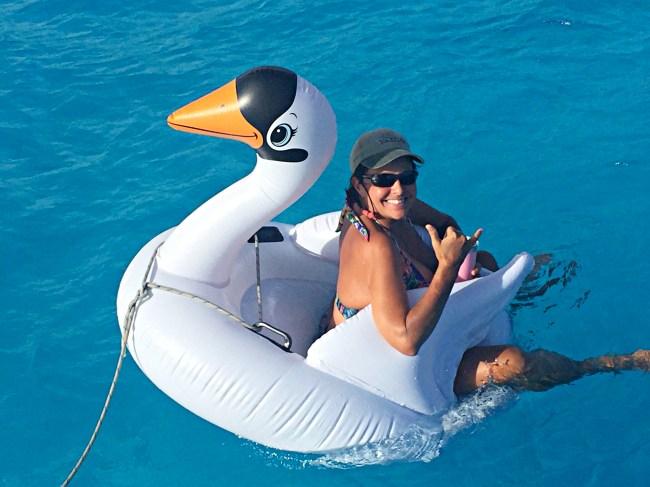BB Jilly & Swan