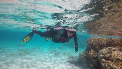 Underswater DAnd